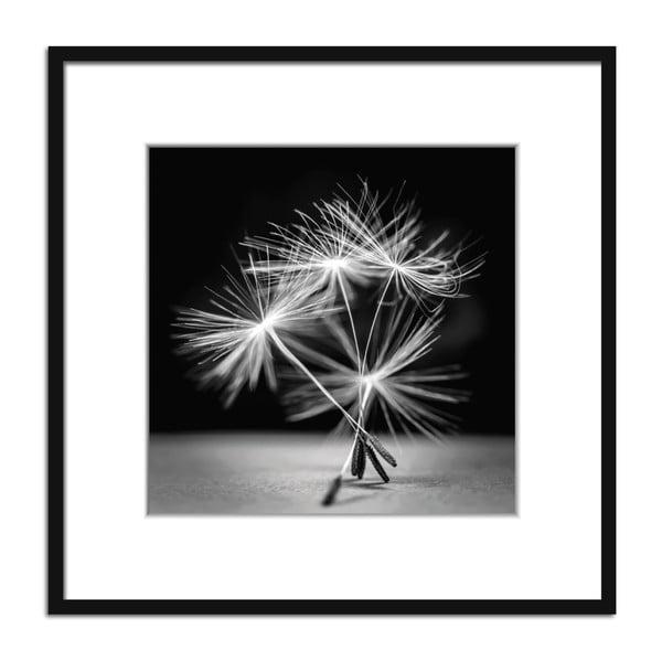 Tablou Styler Artbox Dandel I, 50 x 50 cm