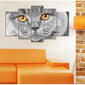 5dílný obraz Kočičí pohled