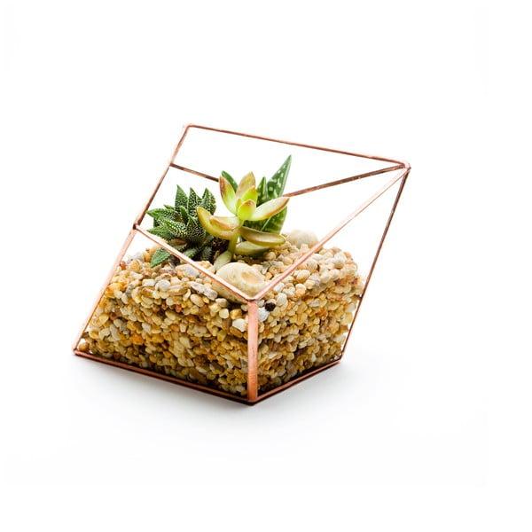 Terárium s rostlinami Urban Botanist Diamond Terrarium, světlý rám