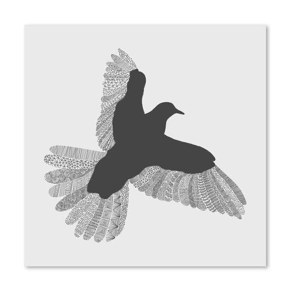Plakát Bird Grey od Florenta Bodart, 30x30 cm