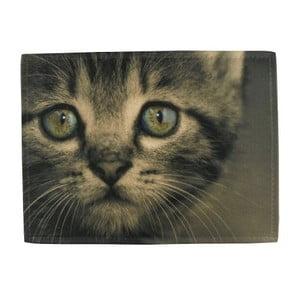 Kuchyňská předložka Kitten Green Eyes