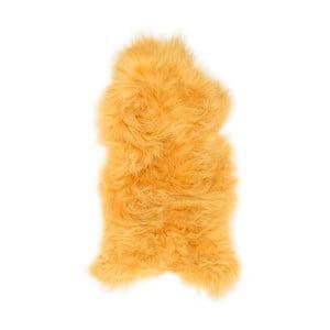 Žlutá ovčí kožešina s dlouhým chlupem Arctic Fur Ptelja, 110x60cm