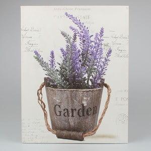 Obraz Dakls Garden