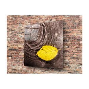 Skleněný obraz Insigne Cantalo, 40x40cm