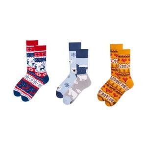 Sada 3 párů ponožek v dárkovém balení Many Mornings Winter Buddies, vel.39–42