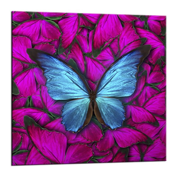 Obraz Styler Glasspik Red Butterfly, 20 x 20 cm