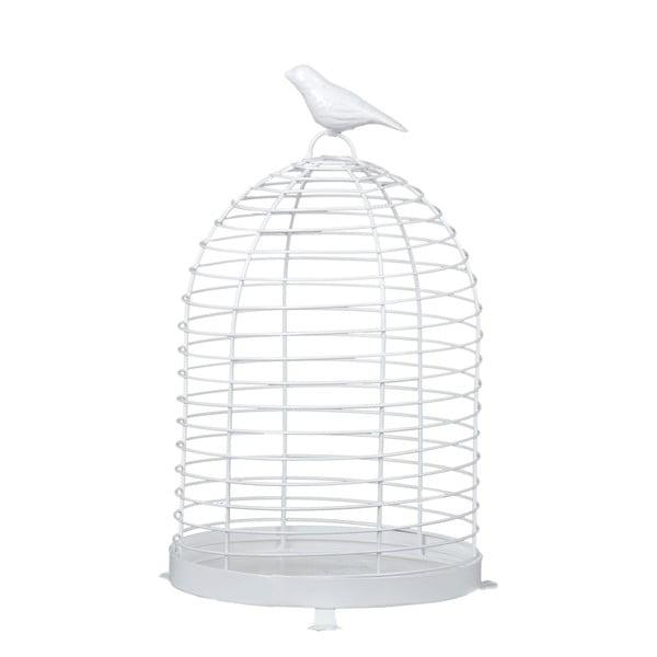 Stojan Bílý pták