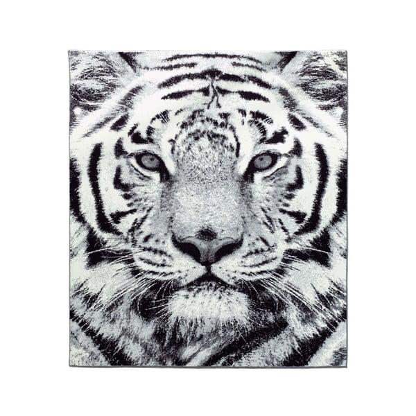 Koberec Safari - tygr, 160x225 cm