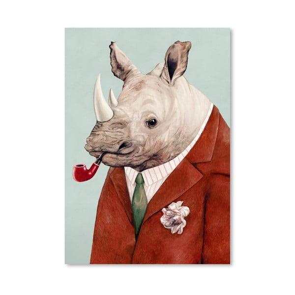 Plakát Rhino, 30x42 cm