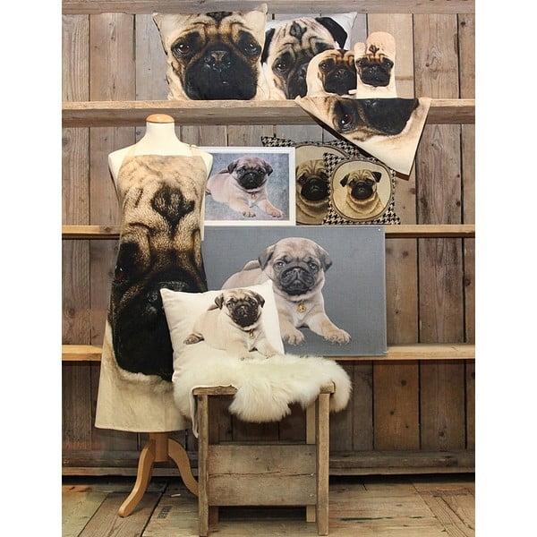 Polštář Pug Dog, 50x50 cm