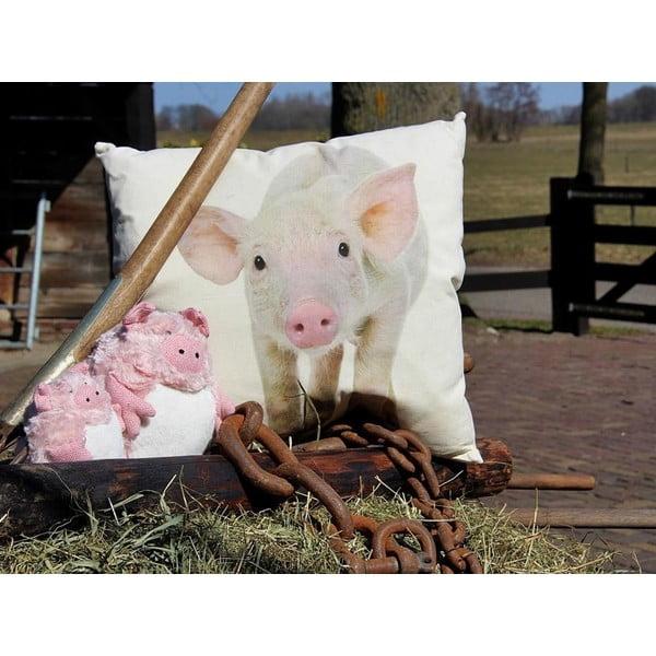 Polštář Pig 50x50 cm