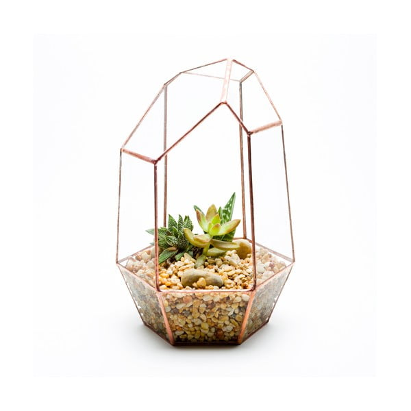 Terárium s rostlinami Urban Botanist Gem Terrarium, světlý rám