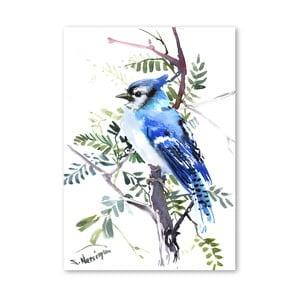 Autorský plakát Blue Jay od Surena Nersisyana, 42x30cm