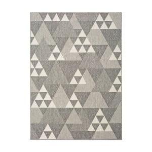 Světle šedý koberec vhodný i na ven Universal Clhoe, 120 x 170 cm
