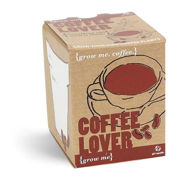 Set grădinărit cu semințe de cafea Gift Republic Coffee Lover