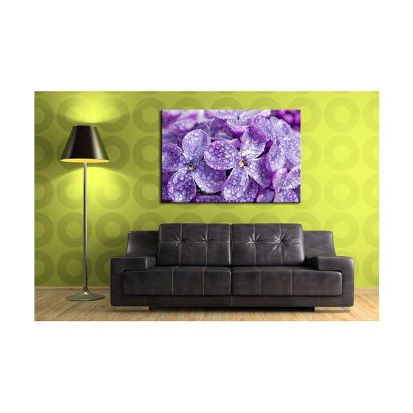 Fotoobraz Květy levandule, 90x60 cm