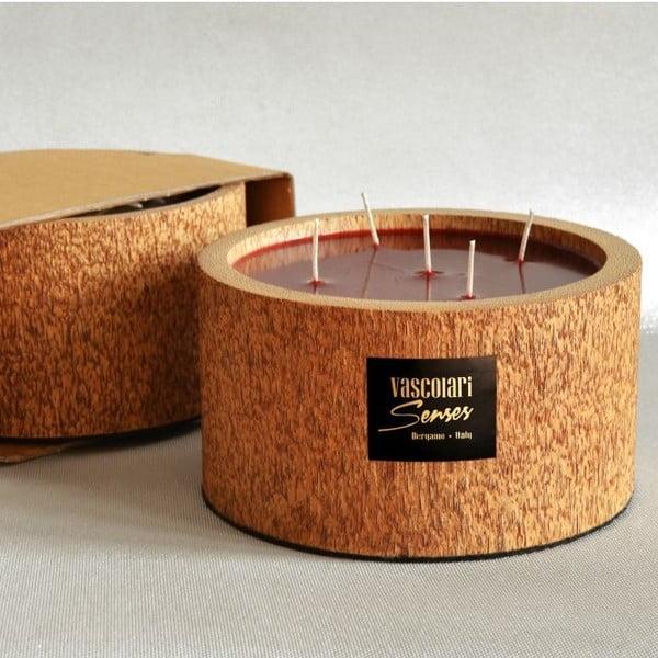 Palmová svíčka Legno Bordeux s vůní exotického ovoce, 120 hodin hoření