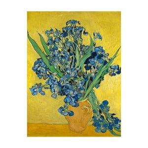 Tablou Vincent van Gogh - Irises, 40x30 cm