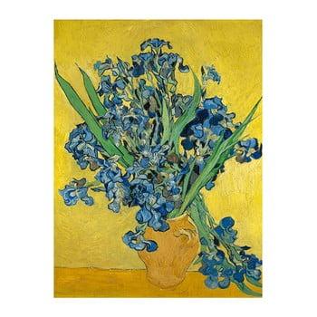 Reproducere pe pânză după Vincent van Gogh – Irises, 60 x 45 cm de la Fedkolor