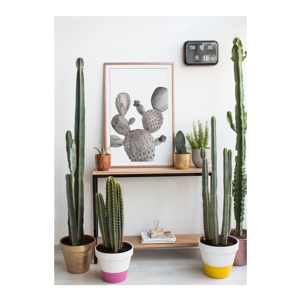 Obraz Really Nice Things Cactus Gris