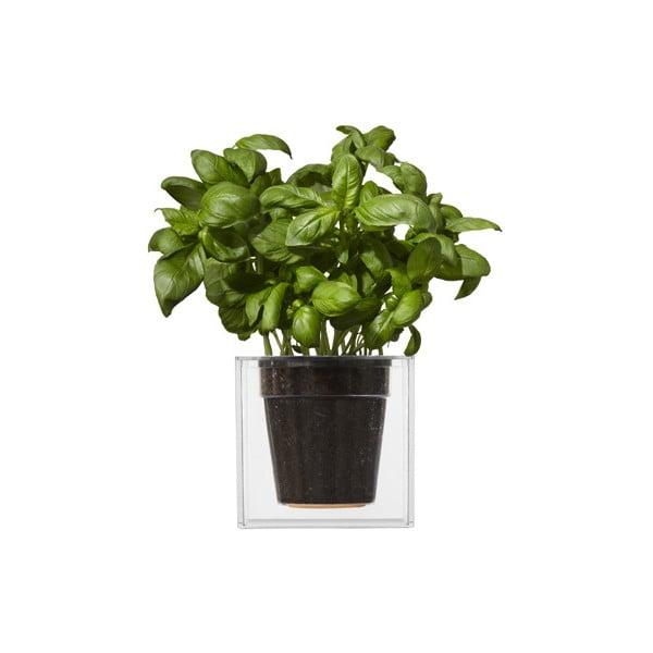 Samozavlažovací květináč Cube, velký