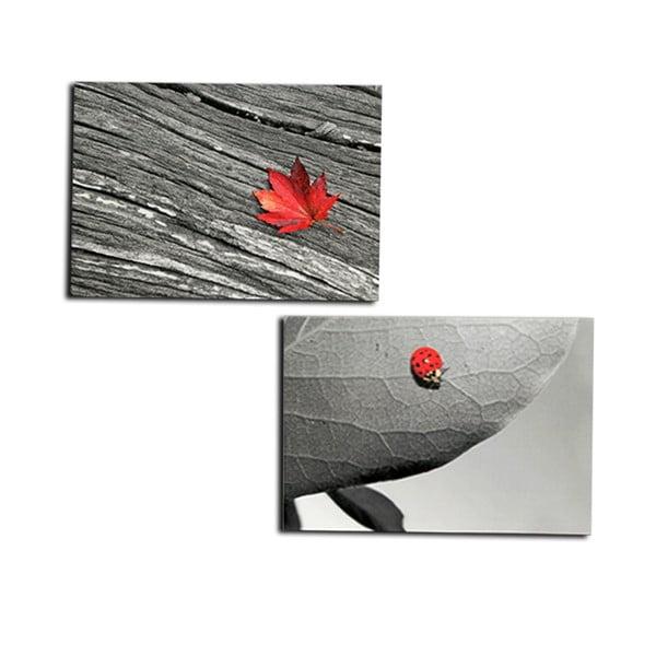 Set 2 dřevěných obrazů Leave, 50x40 cm