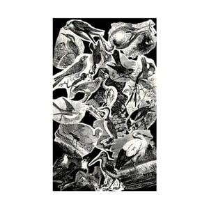 Koberec Casa Di Bassi Birds, 120 x 200 cm