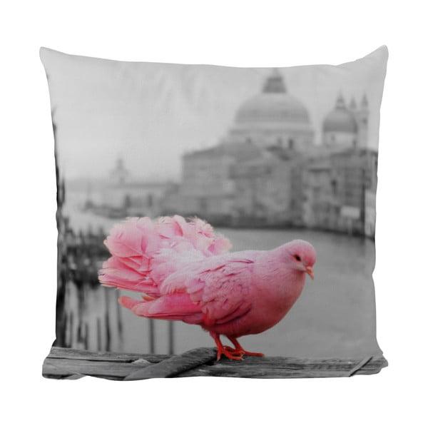 Polštářek Black Shake Pink Dove, 50x50 cm