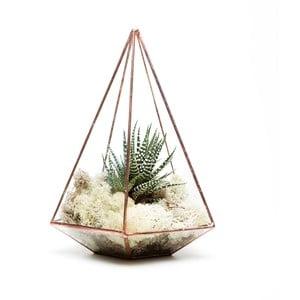 Terárium s rostlinami Urban Botanist Jewel Terrarium, světlý rám