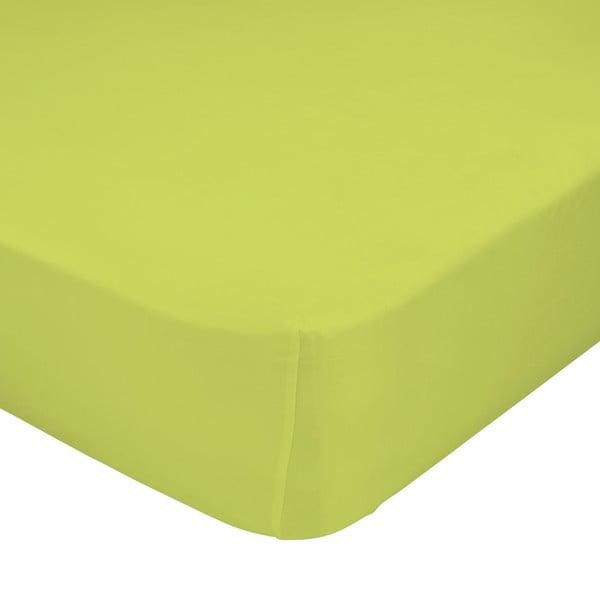 Zelené elastické prostěradlo Happynois, 90x200 cm