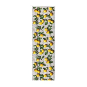 Vysoce odolný běhoun Webtappeti Limoni, 58x140cm