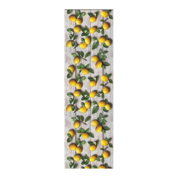Vysoce odolný běhoun Webtappeti Limoni, 58x190cm