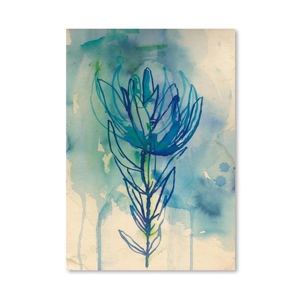 Plakát Blue Wash Protea, 30x42 cm