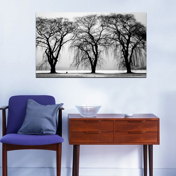 Obraz Black&White Trees,41x70cm