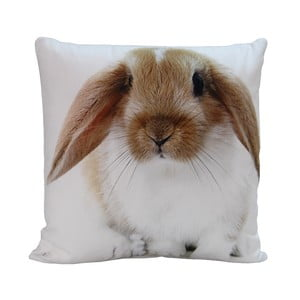 Polštář Rabbit Paul, 45x45 cm