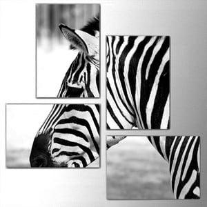 4dílný obraz Zebra, 76x76 cm