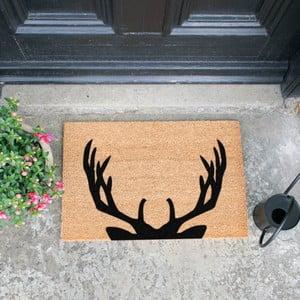 Rohožka Artsy Doormats Stag Antlers,40x60cm
