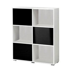 Černobílá knihovna 13CasaSamuel
