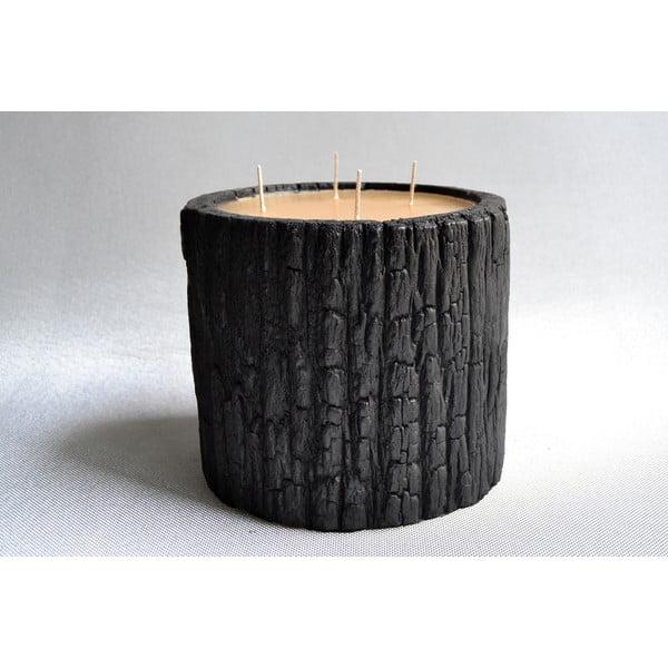 Palmová svíčka Legno Wood s vůní medu, 120 hodin hoření