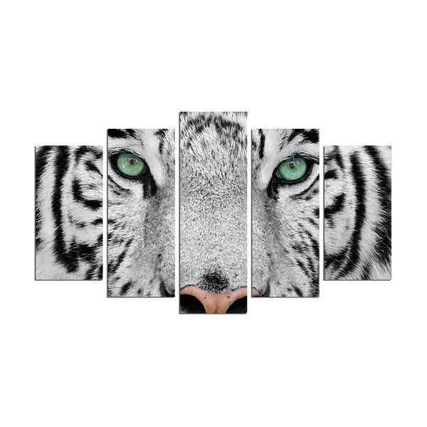 Vícedílný nástěnný obraz Snow Tiger
