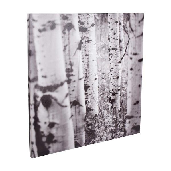 Obraz Imprime, 50x50 cm