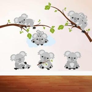 Samolepka na stěnu Koala, 50x70 cm