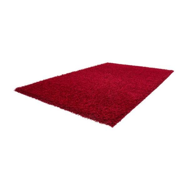 Koberec Guardian Red, 120x170 cm