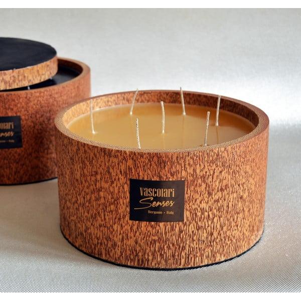Palmová svíčka Palm Legno s vůní medu, 240 hodin hoření