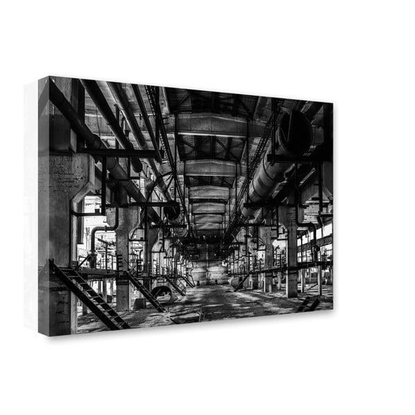 Obraz Styler Canvas Silver Oldie, 85 x 115 cm