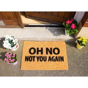 Preș  Artsy Doormats Not You Again, 40 x 60 cm