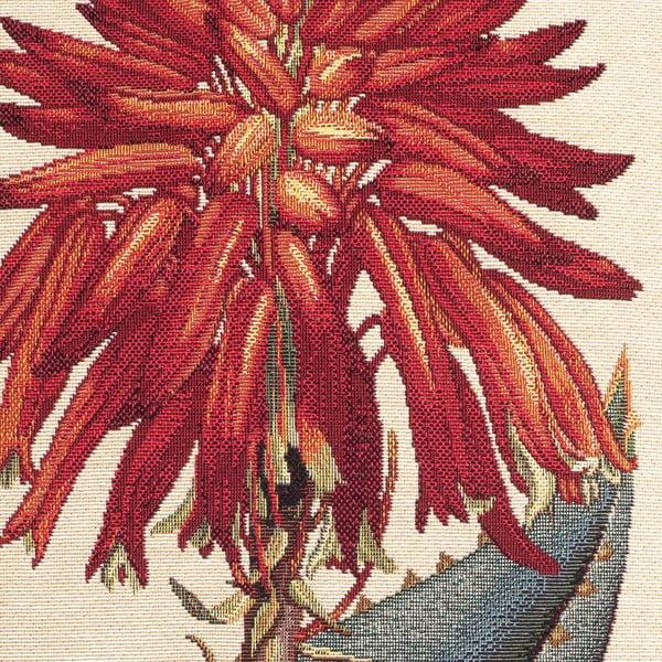 Krémový polštář Casa Di Bassi Desert Cactus, 45 x 45 cm