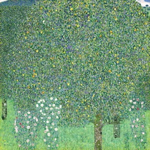 Reproducere tablou Gustav Klimt - Rose Bushes under the Trees, 70 x 70 cm