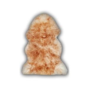 Hnědá ovčí kožešina Pipsa Mouton, 110x80 cm