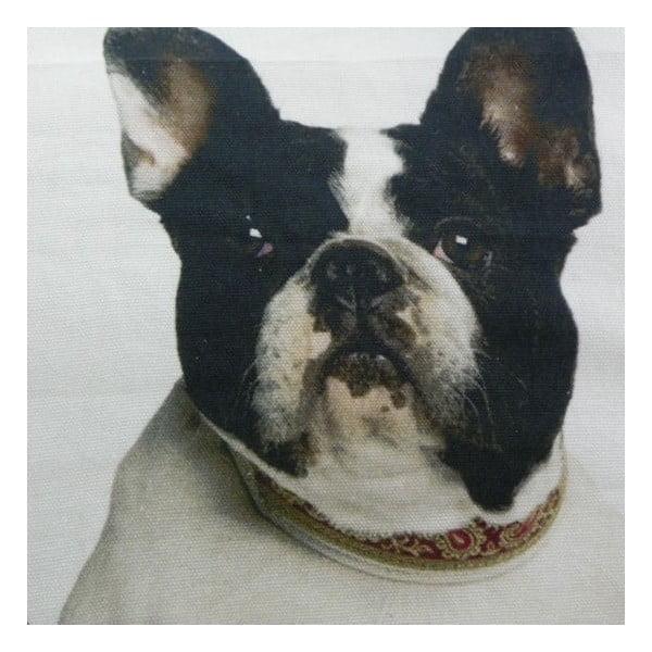 Pernă French Bulldogs 50x50 cm